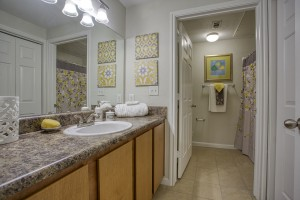 1 Bedroom Apartments in San Antonio, TX - Model Bathroom