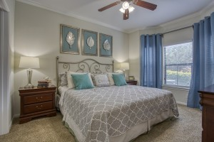 1 Bedroom Apartments in San Antonio, TX - Model Bedroom