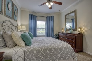 1 Bedroom Apartments in San Antonio, TX - Model Bedroom (2)