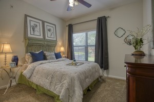 1 Bedroom Apartments in San Antonio, TX - Model Bedroom (3)