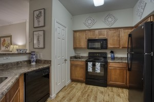 1 Bedroom Apartments in San Antonio, TX - Model Kitchen