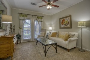 1 Bedroom Apartments in San Antonio, TX - Model Living Room