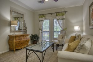 1 Bedroom Apartments in San Antonio, TX - Model Living Room (2)