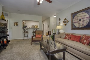 Three Bedroom Apartments in San Antonio, TX - Model Living Room (2)