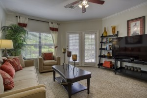 Three Bedroom Apartments in San Antonio, TX - Model Living Room (3)