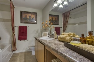 Two Bedroom Apartments in San Antonio, TX - Model Bathroom