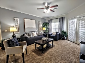 Two Bedroom Apartments in San Antonio, TX - Model Living Room (2)