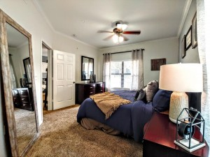 One Bedroom Apartments in San Antonio, TX - Model Bedroom